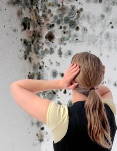 Verschimmelte Wand mit Renovierungsbedarf
